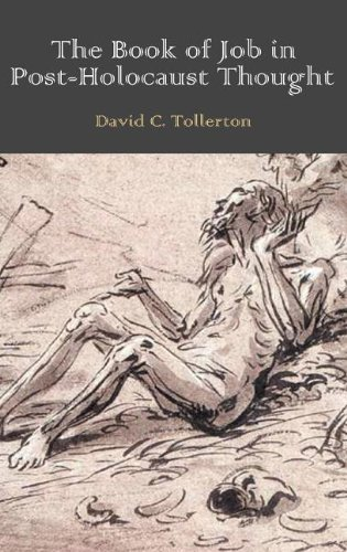 Download The Book of Job in Post-Holocaust Thought (Bible in the Modern World) PDF ePub fb2 ebook