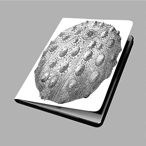 """Compatible with 3D Printed iPad 9.7 Case,19th Century Engraving of an Echinoid sea Urchin Back Protector Cover iPad 9.7"""" air/air 2"""