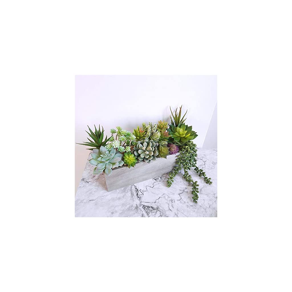 AuroraBotanical 14 pcs Artificial/Faux/Fake Succulent Plants   Assorted Variety Pack of Unpotted Realistic Plastic Cactus Succulents for Home Greenery Decoration