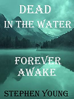 DEAD IN THE WATER; FOREVER AWAKE. Investigating the Smiley Face Killers.: The Unexplained Disappearances, Hundreds of Missing Men, the Unexplained Mysteries of the Missing Men: True stories. by [Young, Stephen]