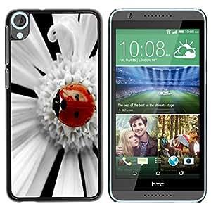 Dragon Case - FOR HTC Desire 820 - Beetle fell asleep - Caja protectora de pl??stico duro de la cubierta Dise?¡Ào Slim Fit