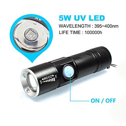 Blacklight Flashlights USB Rechargeable Portable 395nm Led Flashlight Mini Handheld Torch Black Light Detector for Dog Urine, Pet Stains (Black)
