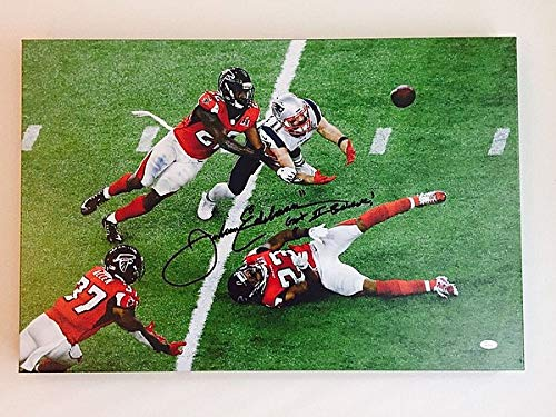 - Julian Edelman Autographed Signed The Catch 20X30 Canvas JSA Witnessed Wp418750