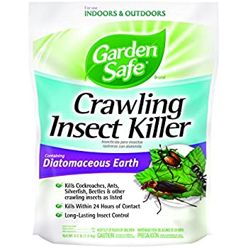 Organic Food Grade Diatomaceous Earth Humans