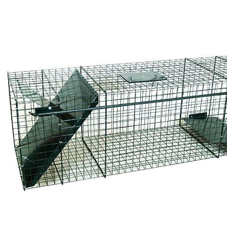 Moorland Jaula Trampa- para Captura de Conejos, Gatos y Ratas - 5087: Amazon.es: Jardín