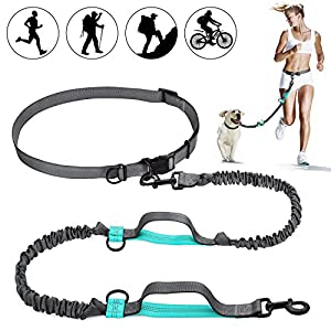SHINE HAI Retractable Hands Free Dog Leash with Dual Bungees for Dogs up to 150lbs, Adjustable Waist Belt, Reflective Stitching Leash for Running Walking Hiking Jogging Biking 26