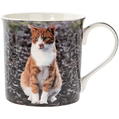 Taza para gato con diseño de gato y gato, regalo para gato o dama, ...