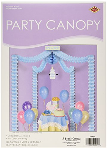 Its Party Canopy Accessory count product image