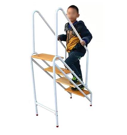 Prime Amazon Com Dxz Ladder Multi Function Step Stool Non Slip Creativecarmelina Interior Chair Design Creativecarmelinacom