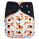 "HappyEndings ""Night, Night""» Charcoal Bamboo All In One Diaper (+Pocket & 5 Layer Charcoal Bamboo Insert) ""Foxy"""