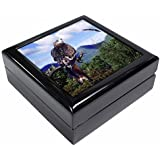 Red Kite Bird of Prey Keepsake/Jewellery Box Christmas Gift by Advanta - Jewellery Boxes