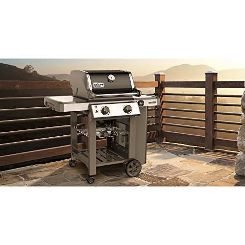 weber 65010001 genesis ii e 210 natural gas grill black. Black Bedroom Furniture Sets. Home Design Ideas