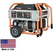 Portable Generator - Residential/Commercial - 10,000 Watt - 120/240V - Carb Cert