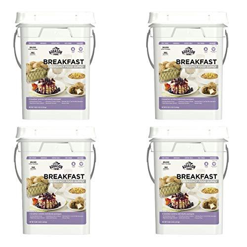 Augason Farms Breakfast Emergency Food Supply 11 lbs 1. 8 oz 4 Gallon Pail (4Count)