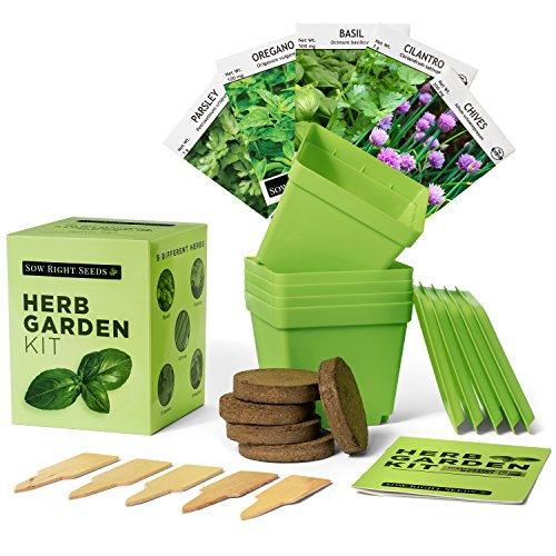 Kitchen Garden Kit: Indoor Herb Garden Starter Kit