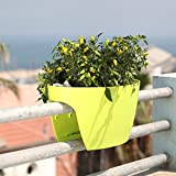 24 in. Railing and Deck Planter windowbox Greenbo XL (Pack of 6) from Greenbo, Green