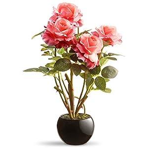 National Tree Company Roses Floor Silk Plant 64