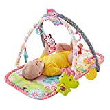 Fisher-Price 3-In-1 Musical Activity Gym - Pink