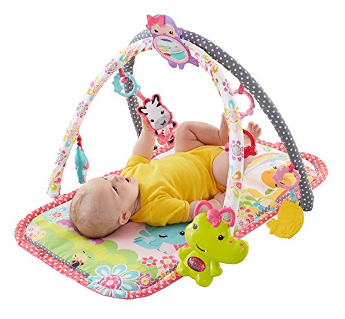 Fisher-Price 3-in-1 Musical Activity Gym, Pink (Infant Girls Play Mat)