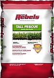 Pennington Rebel Tall Fescue Mixture Powder Coated Seed, 20 lb.