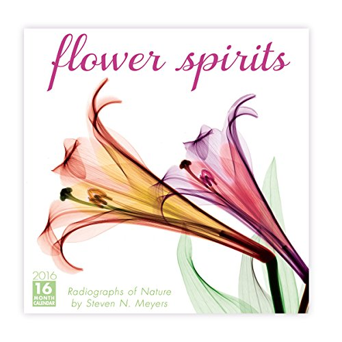 Flower Spirits 2016 Wall Calendar