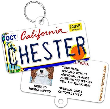 custom dog name tag