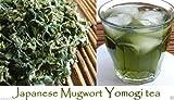 Japanese Mugwort Seeds-YOMOGI - Artemisia princeps, 500 Heirloom seeds