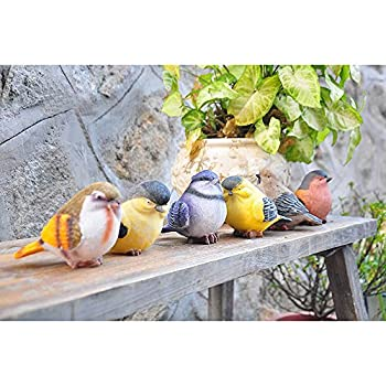 VILIGHT Garden Statue Birds Décor - Gifts for Mom Aunt and Sister - Outdoor Indoor Decoration at Lawn and Yard - Real Birds Size Set of 6