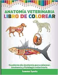 Anatomía Veterinaria. Libro de colorear: Cuaderno de