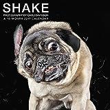 Shake Dogs Wall Calendar (2017)