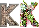 DIY 10 inch Unfinished Succulent Monogrammed Initials Succulent Planter Succulent Letter Box