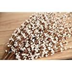 MISSWARM-10-Pieces-295-Long-of-Jasmine-Artificial-Flower-Artificial-Flowers-Fake-Flower-for-Wedding-Home-Office-Party-Hotel-Restaurant-Patio-or-Yard-DecorationWhite