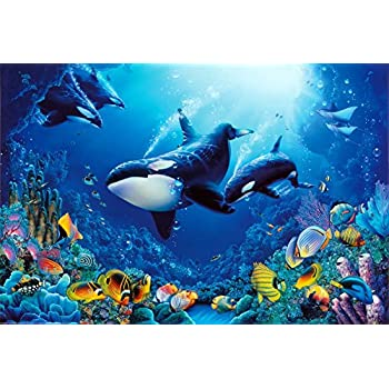 amazon com 24x36 delight of life underwater scene art print