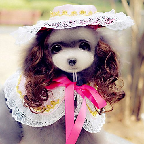 BUYITNOW Small Dog Clothes Pet Party Princess Costume Suits, Lace Shawl, Sun Hat, Wig for Dogs (Sun Wigs)
