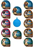 Blue Buffalo Divine Delights Dog Food in 4 - Best Reviews Guide
