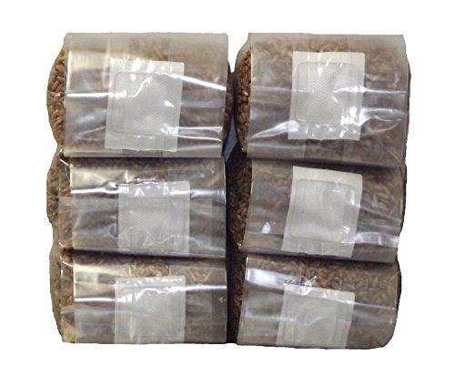 Six 1 Pound Bags of Sterilized Rye Berries Substrate in Mushroom Grow Bags by Out Grow