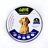 Dog Flea Treatment Collar - Flea and Tick Collar for Dogs and Puppies - Stops Bites & Itching - Kills, Repels & Prevents Pests for 8 Months - One Size Fits All - Large, Medium, and Small Size Dogs -Waterproof. (Grey)