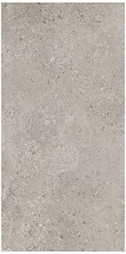 Dal-Tile 24481P-DR08 Dignitary Tile, 24