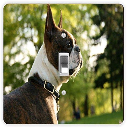 - Rikki Knight Boston Terrier Dog-Single Toggle Light Switch Plate