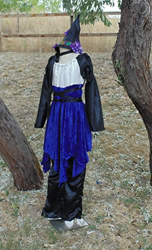 Teen Girls 10-14 Purple Pixie Witch with Matching
