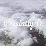 Precisely In (feat. Mathew McCoy, Ivan Myslikovjan & Marek Leždík)