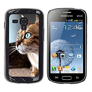 Vortex Accessory Hard Protective Case Skin Cover For Samsung Galaxy S Duos ( S7562 S7560 S7560M ) - Savannah Serengeti Blue Eyes Playing Cat
