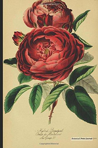 "Botanical Print Journal: rosa hybrid perpetual, 6"" x 9"" Vintage Botanical Flower Print Journal - [Lined Journal] ebook"
