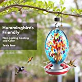 Muse Garden Hummingbird Feeder for Outdoors, Hand