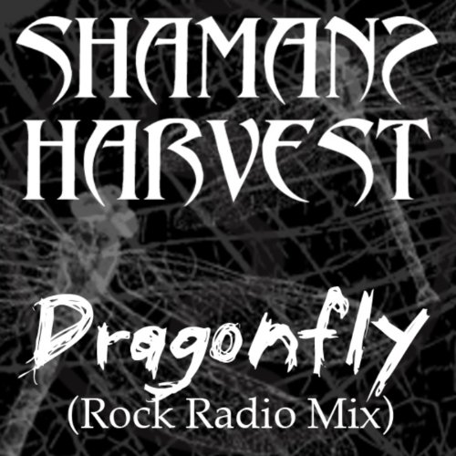 Dragonfly (Radio Mix) - Single