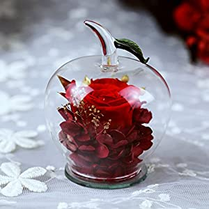 DeFancy Handmade Preserved Flowers Rose Decor with Apple-shaped Glass-Best Gift for Valentine's Day,Mother's Day,Birthday 28