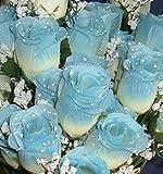 84 Silk Rose Flowers w/Raindrops - Wedding Flowers - Bridal/Floral - Ivory/Blue