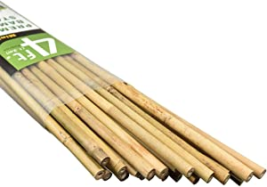 Mininfa Natural Bamboo Stakes 4 Feet, Eco-Friendly Garden Stakes, Plant Stakes Supports Climbing for Tomatoes, Trees, Beans, 25 Pack