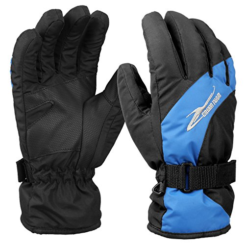 Hicool Waterproof Insulated Ski Gloves, X-Large, Black/Blue