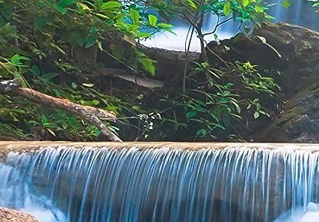 murando Quadro 100x50 cm 5 Pezzi Stampa su Tela in TNT XXL Immagini Moderni Murale Fotografia Grafica Decorazione da Parete Buddha Paesaggio Natura Cascata Albero Bosco Vari Colori c-A-0021-b-n